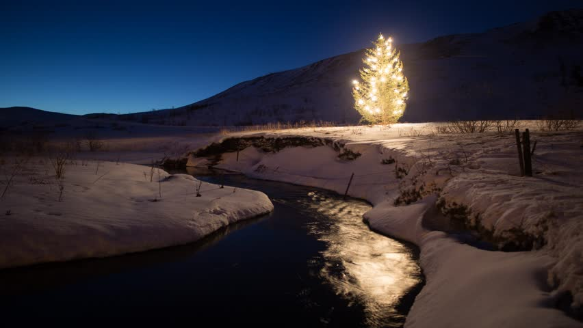 Christmas tree glowing lights by stock footage video royalty