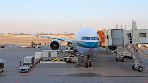 load and unload cargo to airplane for air freight logistic