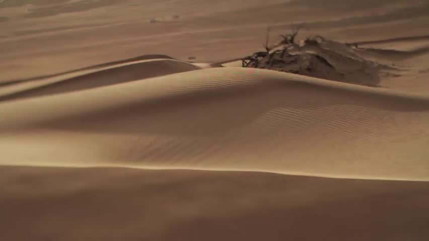 The wind blows sand across a desert plain in Oman | Shutterstock HD Video #8754166