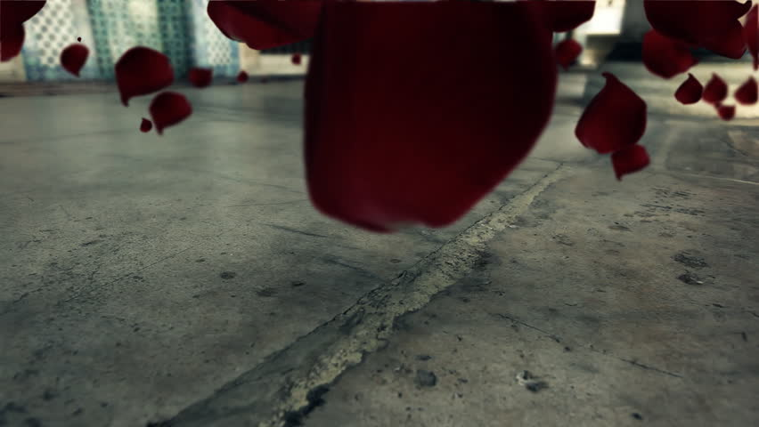 Red rose leafs floating and flying over obsolete marble ground  CGI generated, color matched image with nice shadow effects / HD1080 / 30fps