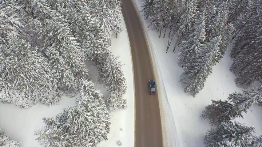 AERIAL: Car driving through snowy pine forest in winter #8933326