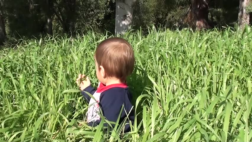 Baby plays with and tastes grass