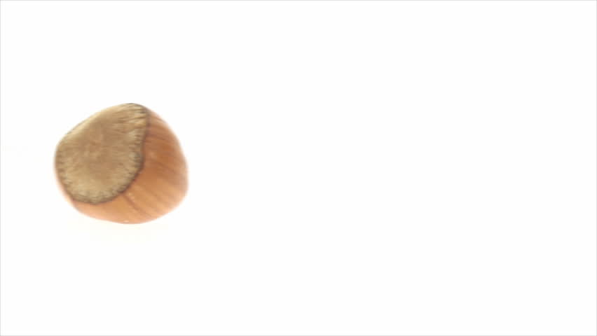 Panning right to left of single in-shell filbert on white background 2. This video was shoot using custom light set up with additional custom build underneath light system to eliminate shadows. | Shutterstock HD Video #9111692