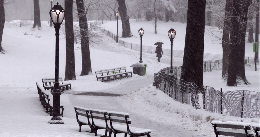A woman with an umbrella walking a path in Central Park during a snowstorm. The path in lined with benches and street lights. | Shutterstock HD Video #9332606
