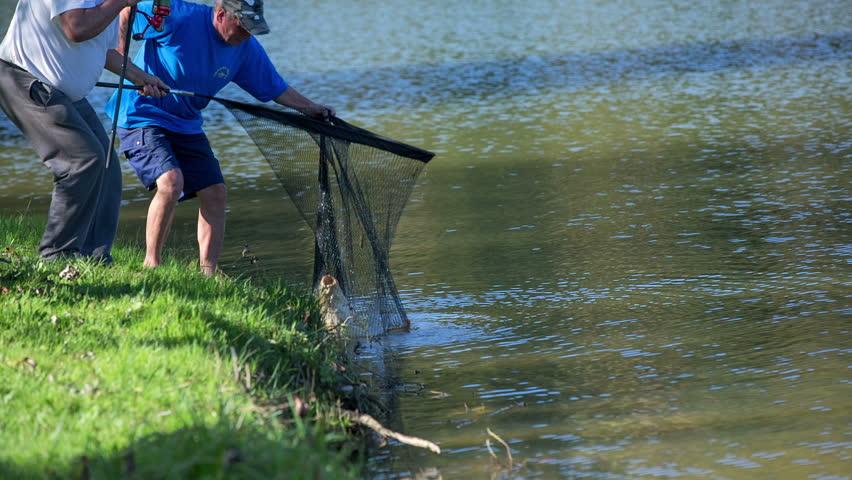 Commercial fishing fisherman pulling fishing net for Sjfc fish r net