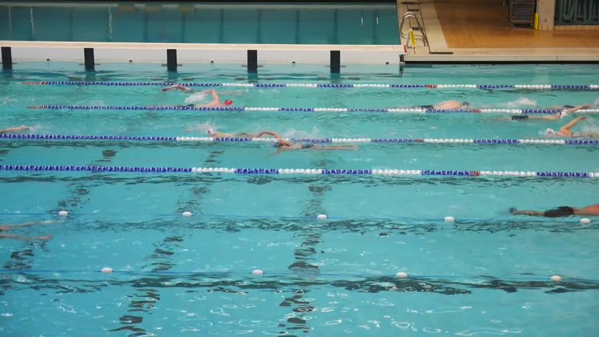 Superbe VANCOUVER BC CANADA   MARCH 27 2015 Aquatic Center Swimmers.   HD Stock  Footage Clip