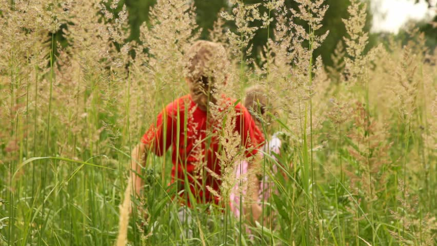 Boy and a girl are working their way through thick grass hot summer day. | Shutterstock HD Video #953116