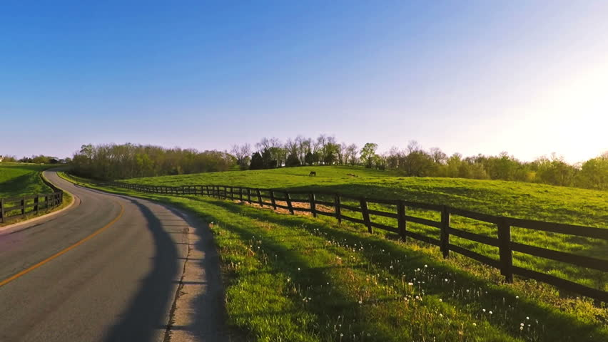 Bluegrass horse farm #9760934