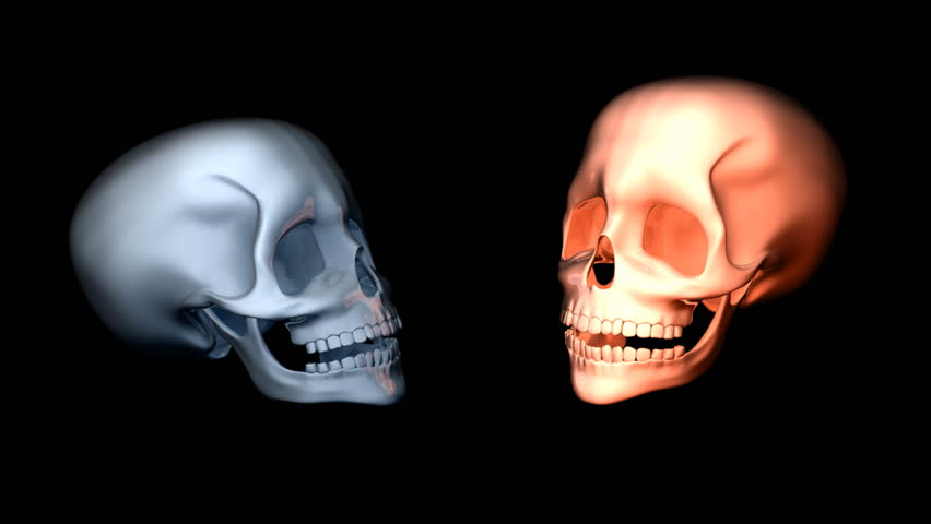 animation skull week 3 This model of the human skull slowly explodes to reveal the structure of the component bones, much like an animated version of the classic physical beauchêne preparation of an exploded skull.